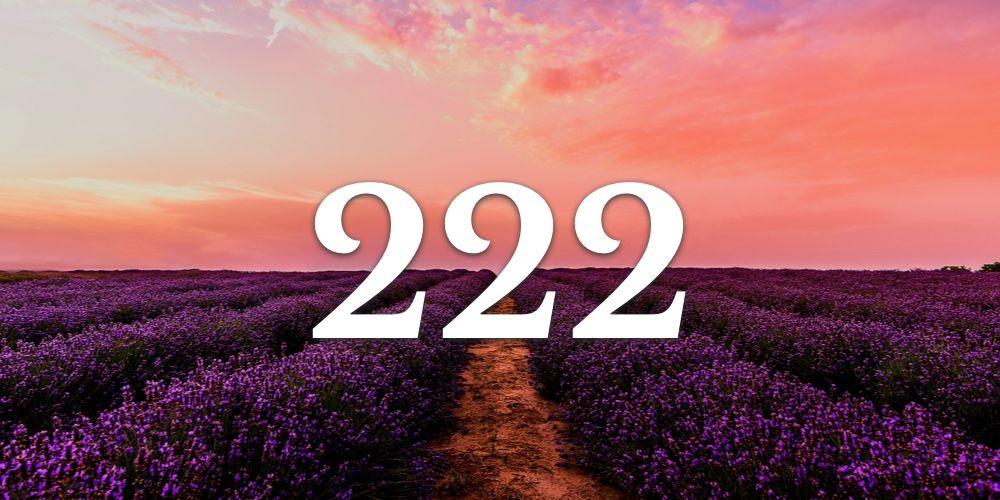 Numerologia do 222 - Você vê o 222 em todo lugar?