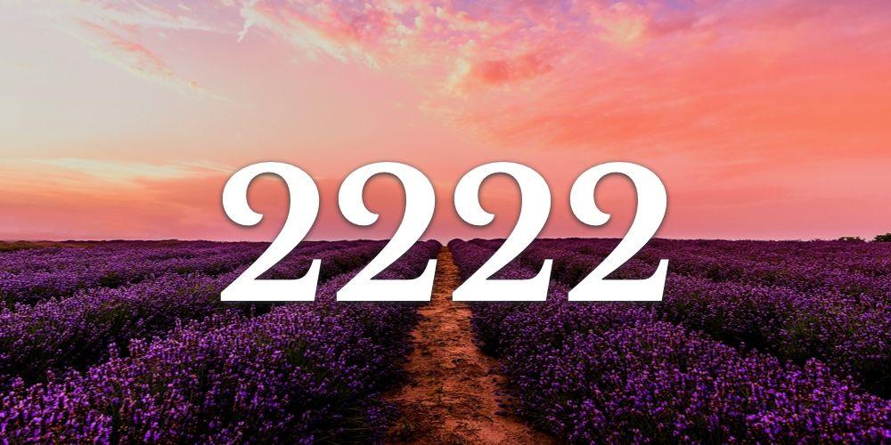 Numerologia do 2222 - Você vê 2222 em todo lugar?